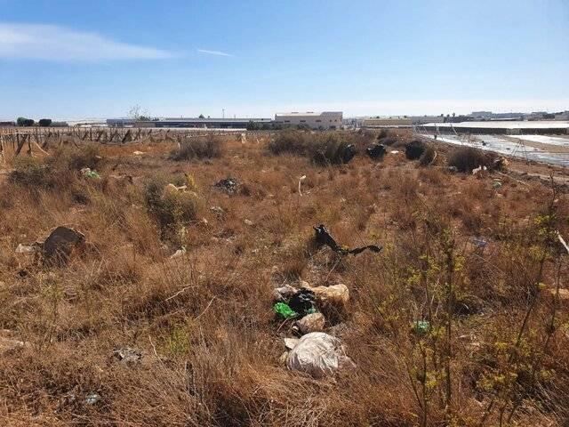imagen 2 de Terreno para invernadero en El Ejido