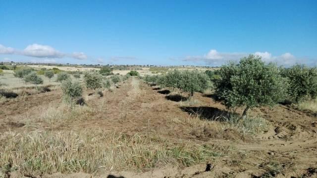imagen 1 de Venta de Finca en Malpartida De La Serena