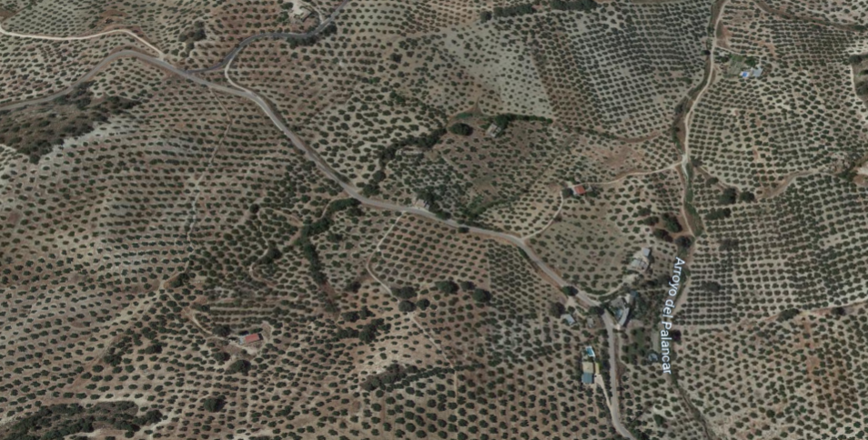 imagen 1 de Venta terrenos olivar Priego de Córdoba (fincas de bancos)