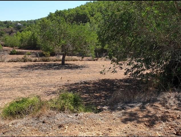 imagen 1 de Venta de gran terreno en San José (Ibiza)