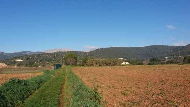 imagen 1 de Venta de finca con pozo y alberca en Campanet (Mallorca)