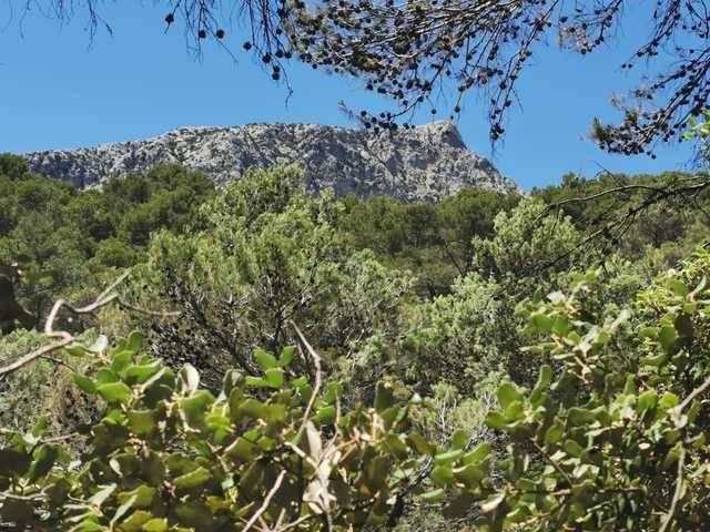 imagen 1 de Venta de manífica finca de capricho en Puigpuñent/Puigpunyent (Mallorca)