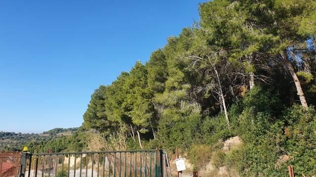 imagen 1 de Venta de terreno en Castellbisbal (Barcelona)