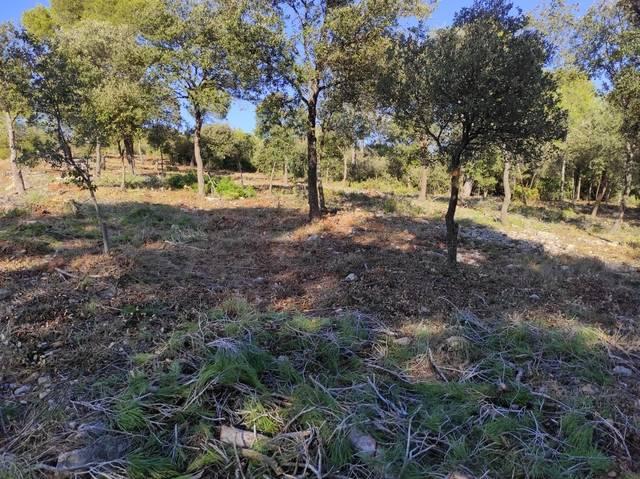 imagen 1 de Venta de terreno y finca forestal en Castellnou de Bages (Barcelona)