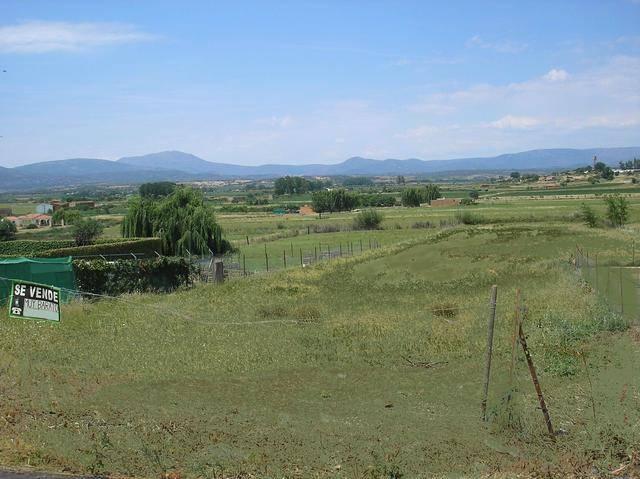 imagen 1 de Venta finca de regadío en Moraleja (Cáceres)