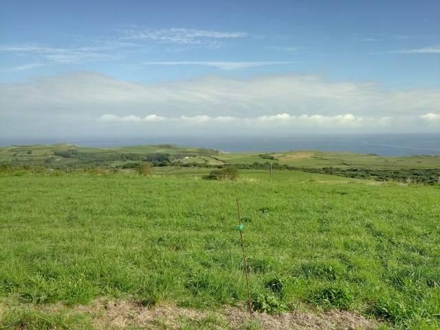 imagen 1 de Venta de prado en Prellezo (Cantabria)