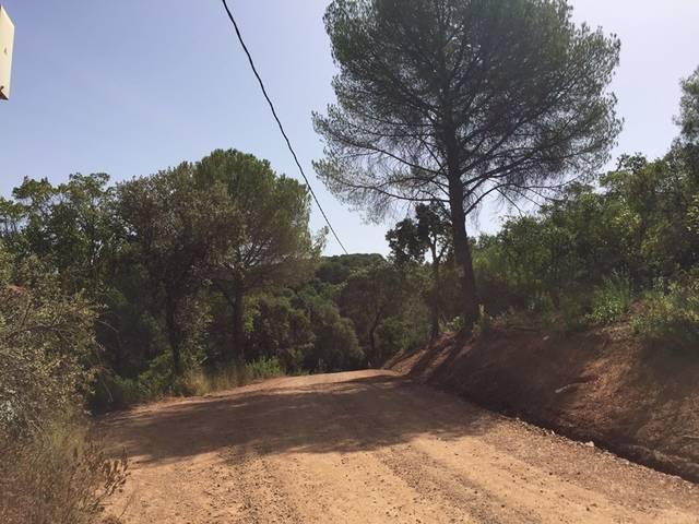 imagen 1 de Venta de finca en Sierra de Córdoba (Córdoba)