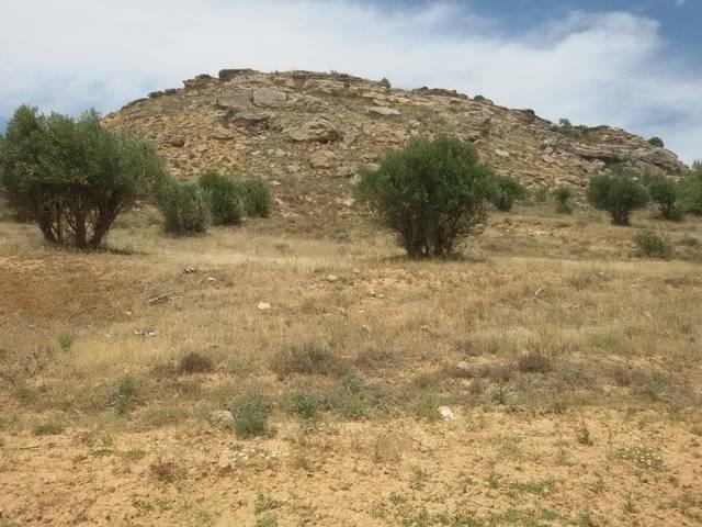 imagen 1 de Venta de finca en Bonilla (Cuenca)