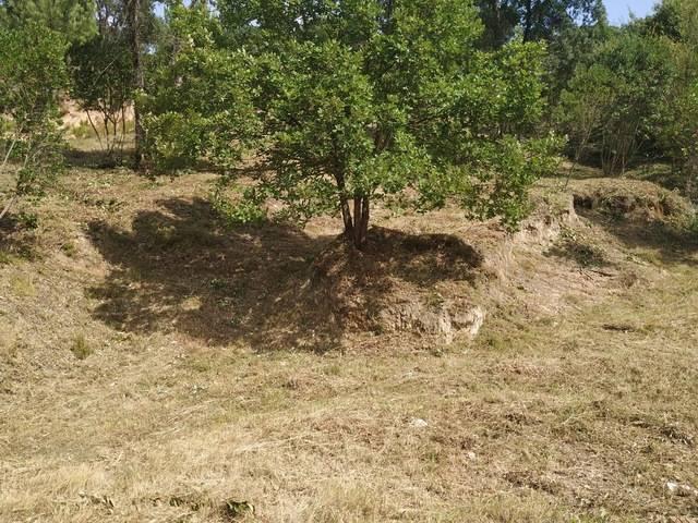 imagen 1 de Venta de terreno en Maçanet/Massanet de La Selva (Gerona)