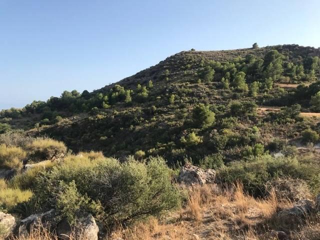imagen 1 de Venta de magnífico terreno en Gualchos (Granada)