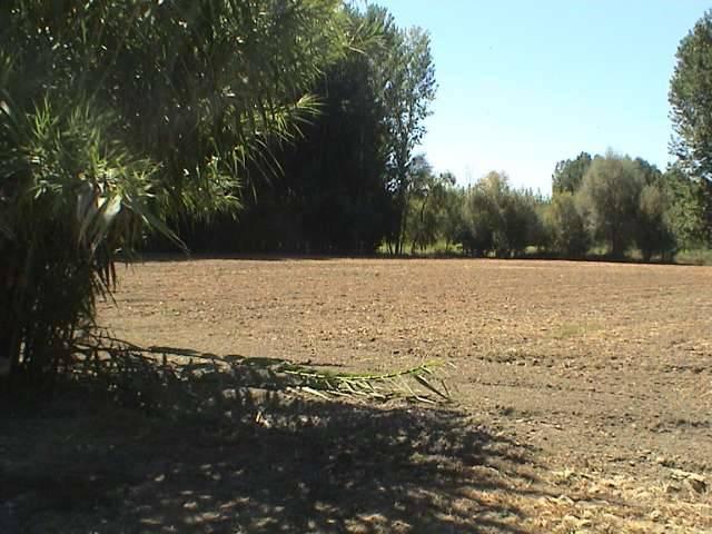 imagen 1 de Venta de finca en Fuente Vaqueros (Granada)