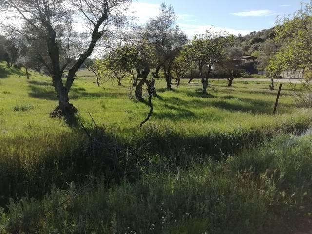 imagen 1 de Venta de preciosa finca en Cumbres Mayores (Huelva)
