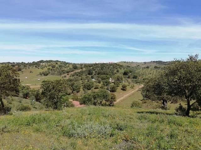imagen 2 de Venta de terreno con abundante agua en Cumbres Mayores (Huelva)