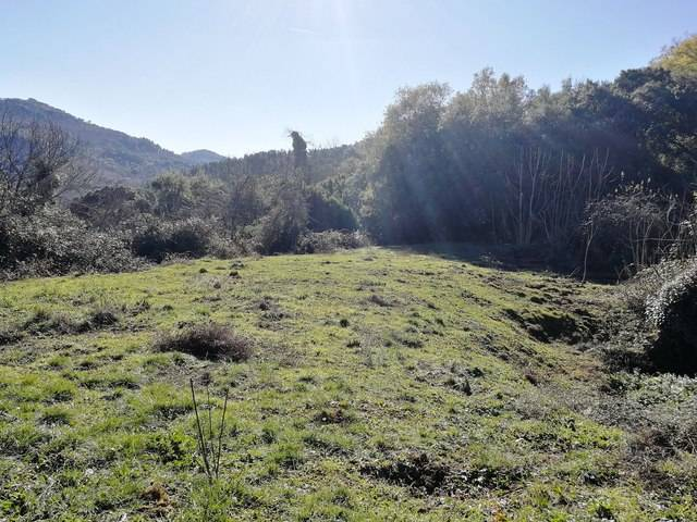 imagen 1 de Venta de finca en Jabugo (Huelva)