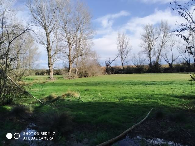 imagen 1 de Venta de estupendo prado en Golpejar de la Sobarriba (León)