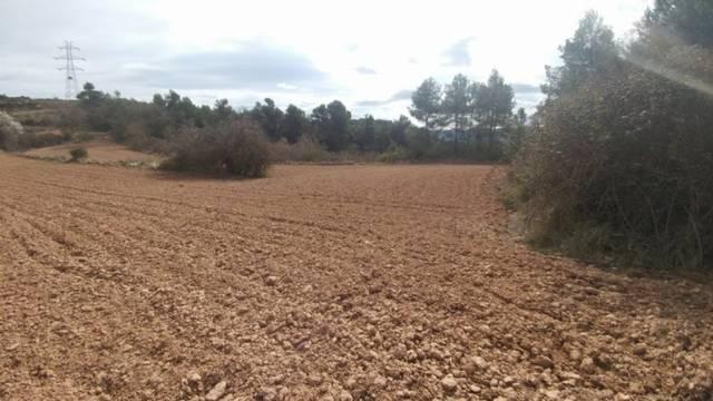 imagen 1 de Venta de terreno en Tarrés (Lérida)