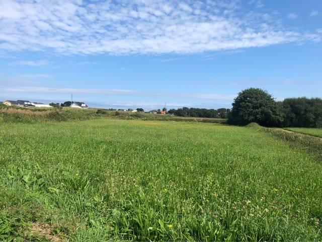 imagen 1 de Venta de prado en Barreiros (Lugo)