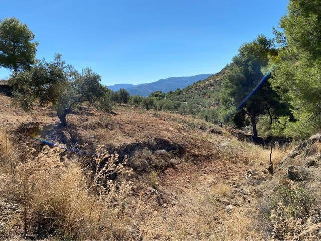 imagen 1 de Venta de terreno en Yunquera (Málaga)