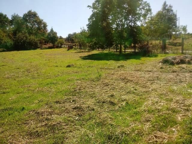 imagen 1 de Se vende terreno en Celanova
