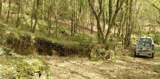 imagen 1 de Se vende terreno forestal en Pereiro de Aguiar