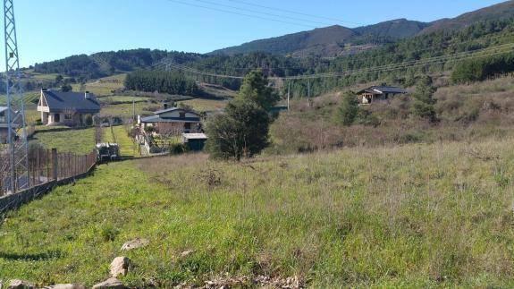 imagen 1 de En Venta finca situada en Valdeorras