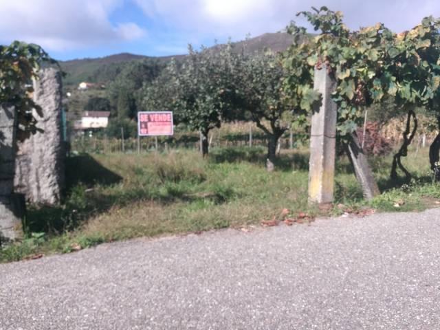 imagen 1 de Venta de finca rústica en Ponteareas (Pontevedra)
