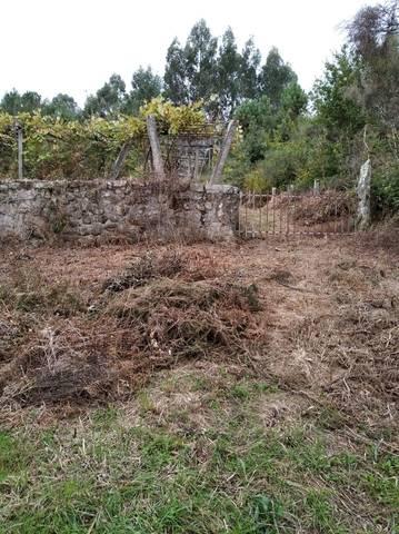 imagen 1 de Venta de finca con viñedo en Ponte Caldelas