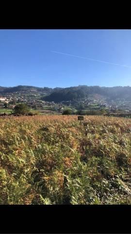 imagen 1 de Venta de finca en Marin (Pontevedra)