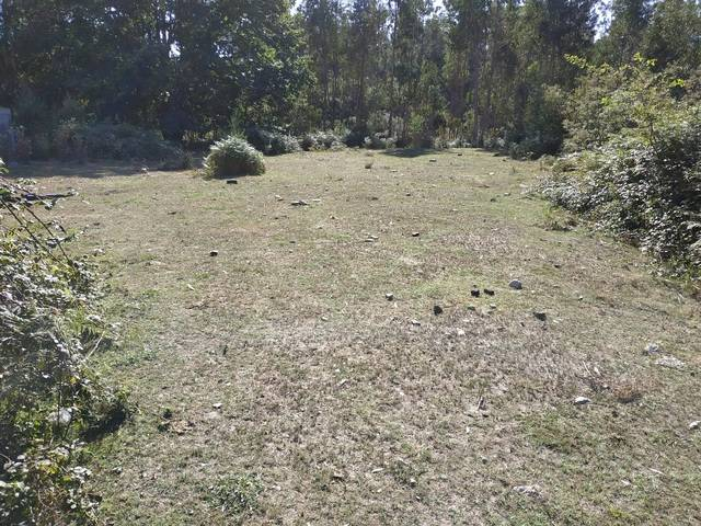 imagen 1 de Venta de terreno edificable en Tomiño