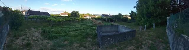 imagen 1 de Venta de terreno con viñedo en Ponteareas (Pontevedra)