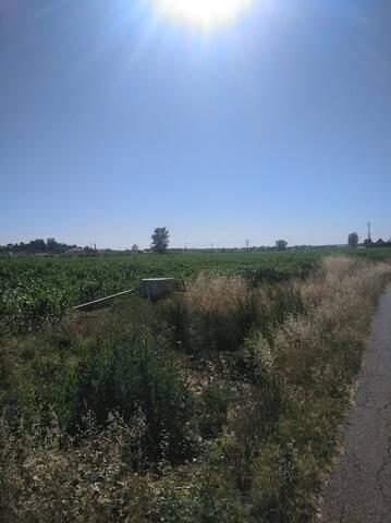 imagen 1 de Venta de finca de regadío en Calvarrasa de abajo (Salamanca)