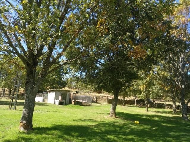 imagen 1 de Venta de finca con casa y piscina en Béjar (Salamanca)