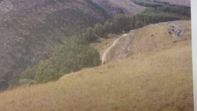 imagen 1 de Venta de finca en entorno natural Sepúlveda (Segovia)
