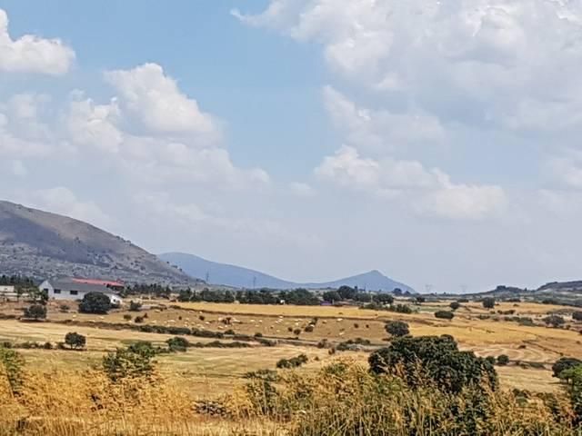 imagen 1 de Venta de finca valla en Navas de San Antonio (Segovia)