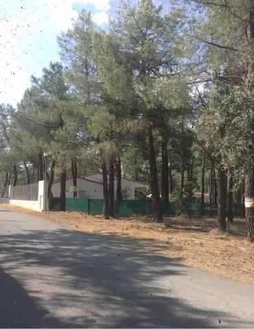 imagen 1 de Venta de terreno con suministros en Marugán