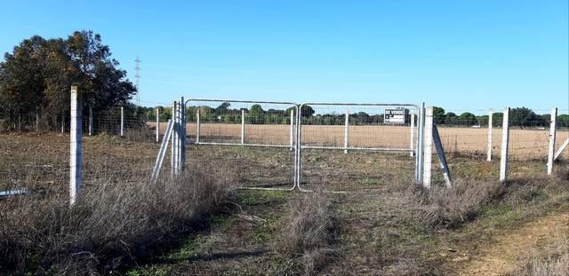 imagen 1 de Venta de terreno vallado en Coria del Río (Sevilla)