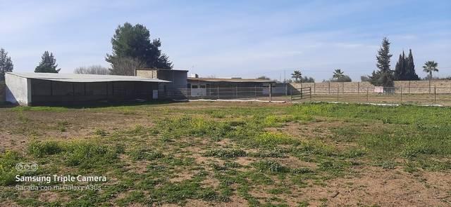 imagen 1 de Alquiler de instalaciones hípicas en Sevilla