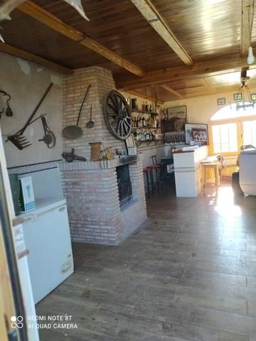 imagen 1 de Venta de finca con olivos y casa en