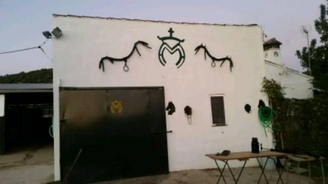 imagen 1 de Venta de finca con cortijo y boxes para caballos en Sevilla
