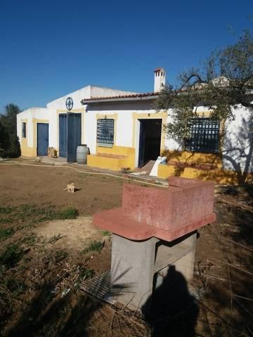 imagen 1 de Venta de finca con vivienda rodeada de frutales en Sanlúcar la Mayor