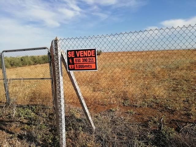 imagen 1 de Venta de parcela rústica vallada