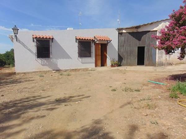 imagen 1 de Venta de finca con vivienda y plantaciones de naranjos en Sevilla