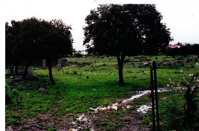 imagen 1 de Venta de bonita finca con cortijo en Castilblanco de los Arroyos