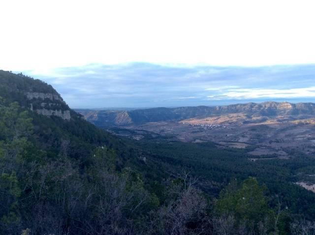 imagen 1 de Venta de finca en plena  naturaleza en La Morera de Montsant