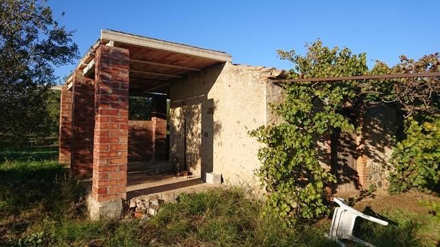 imagen 1 de Venta de finca con olivos y almendros en Montbrio del Camp