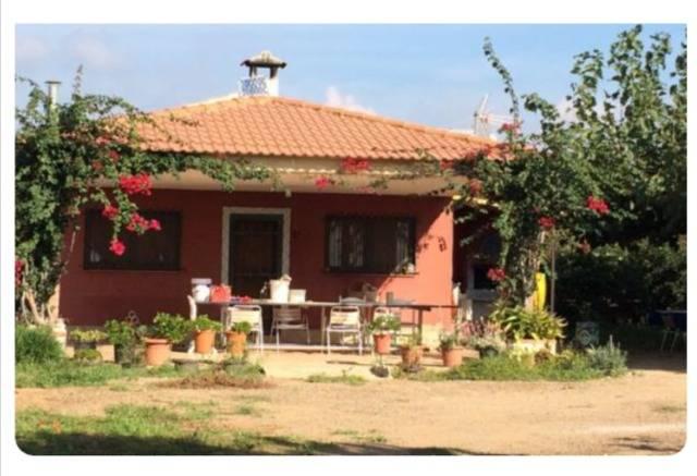 imagen 1 de Venta de finca con vivienda en Montbrio del Camp