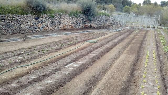 imagen 1 de Venta de terreno con pequeña vivienda en El Masroig