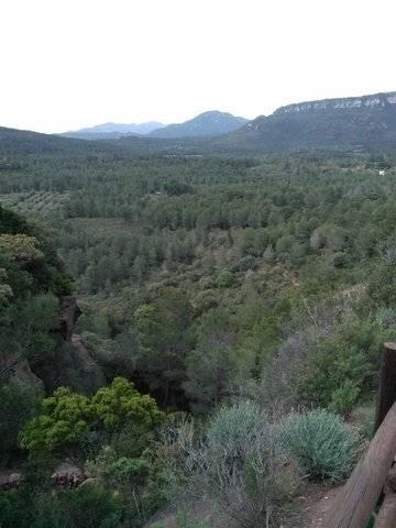 imagen 1 de Venta de finca en Mont Roig del Camp