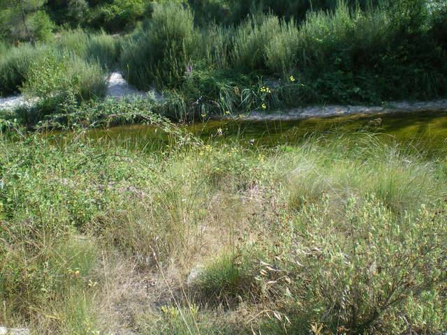 imagen 1 de Venta de terreno en Arnes rodeado de naturaleza