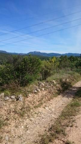 imagen 1 de Venta de terreno rústico en El Masroig (Tarragona)